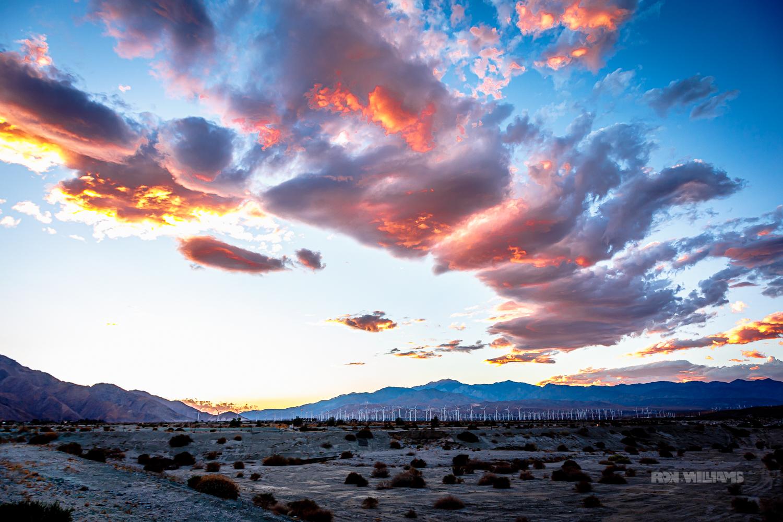 Gorgonio Pass, Wind Farm, Palm Springs.